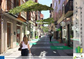 Green roof LEAFSKIN. Source: https://www.singulargreen.com/el-proyecto-urban-greenup-cumple-un-ano/