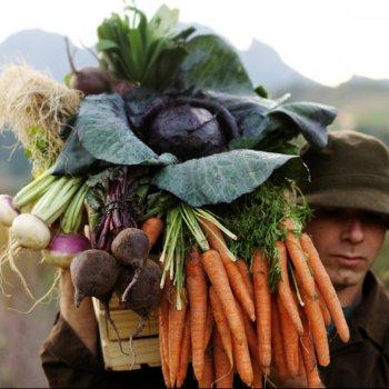 Sp Farmer, credit: The Flying Dutchman