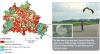 Figure 3: brownfield regeneration case tudy in the Templehof city airport in Berlin (URBES factsheet #5)
